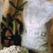 Известковый раствор, известь в мешках, известковое тесто фото