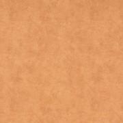 Ткань мебельная Canvas Pelle Camel фото