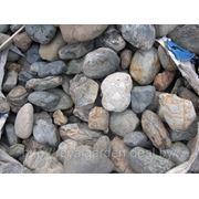 Тигровый камень фото