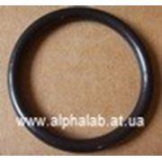 Уплотнительное кольцо для фильтра Leco 604-172 фото