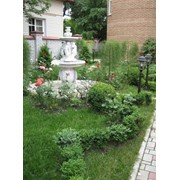 Ландшафтный дизайн сада, Дизайн и озеленение сада Киев фото