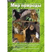 Программно-методический комплекс для дошкольного и начального общего образования Мир природы фото