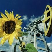 Геофизическое исследование скважин в Украине, Цена, Фото фото