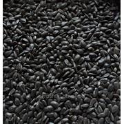 Семена подсолнечника на Экспорт фото