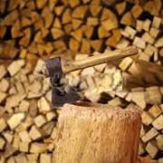 Продам дрова колотие Киев,Киевская область фото