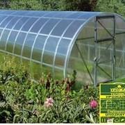 Теплица урожай ПК 6м с сотовым поликарбонатом.. фото
