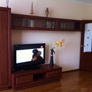 Аренда квартир на сутки в Гомеле фото