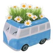 Ромашка Автобус Paris Garden наборы для выращивания, (PG-7522) фото