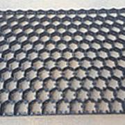 Лоток на 149 куриных яиц для инкубатора Pas Reform фото