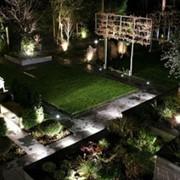 Декоративное освещения сада. Освещение ландшафтов. фото