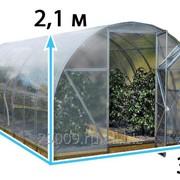 Теплица «Киновская» 4м с Сотовым поликарбонатом 3,5мм фото