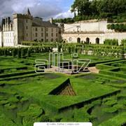 Стрижка кустов и газонов фото