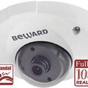 B2710DM Уличная IP-камера купольная BEWARD фото