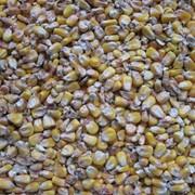 Определение сырого протеина в кормах и фуражном зерне фото