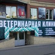 Услуги ветеринарные Ветеринарная клиника Гармония в Челябинске фото