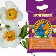 Почвогрунт для луковичных растений фото