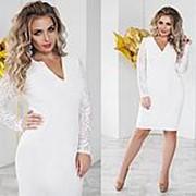 Платье женское белое с гипюровыми рукавами большие размеры (5 цветов) ТК/-02020 фото