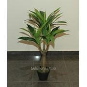 """Растение искусственное в горшке """"Юкка"""" 0,8м OZD/451 AH70451 фото"""