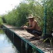Рыболовно-охотничья база фото