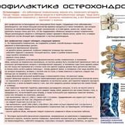 Плакат по медицине К.15 фото