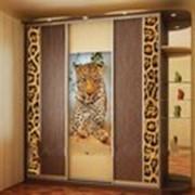 Шкаф-купе с леопардом фото