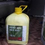 Рекс Дуо 49,7%, к.с. фото