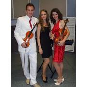 Эстрадное трио BORNEO живая музыка фото