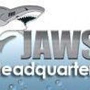 Freedom Scientific Программа экранного доступа Jaws for Windows 15.0 Pro арт. 3765 фото