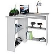 Письменный стол Тайга Стол СТМ-1 фото