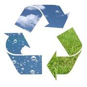 Консультации и содействие природопользователей в экологизации деятельности фото