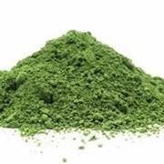 Петрушка зелень сушеная фото