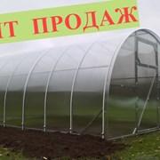 Парник под поликарбонат АГРОСИЛА от 4 до 10 м. фото
