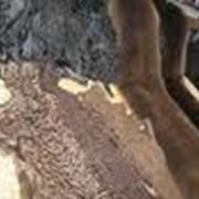 Индивидуальный пошив изделий из меха нутрии фото