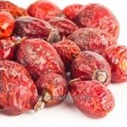 Сухие плоды шиповника фото