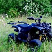Квадроциклы на прокат. фото