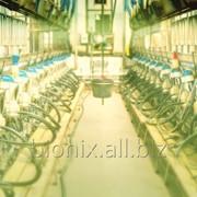 Средство для обезвреживания отходов молочных заводов EcoDairy фото