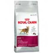 Корм для котов Royal Canin FIT 32 10 кг фото