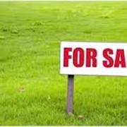 Земельные участки для бизнеса: продажа фото