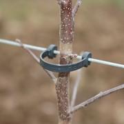 Пластиковые аксессуары Rema для виноградников фото