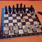 Шахматы - стандартные по браилю фото