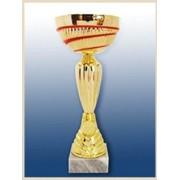 Кубок К2 112 фото