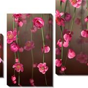 Модульная картина Розовые цветы, Неизвестен фото