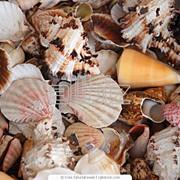 Фотосъемка для видовых открыток, почтовых карточек фото