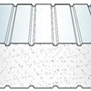 Трехслойные сэндвич панели EcoPanel с утеплителем из пенополистирольных плит фото