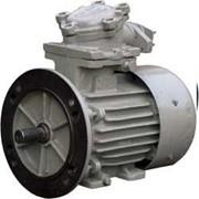 Электродвигатели взрывозащищенные АИМ 63А4 фото