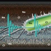 Как Hydroflow влияет на бактерии и водоросли фото