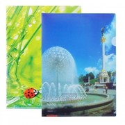 Папка-уголок A4, optima, с цветной печатью, 180 mk. O35101 фото