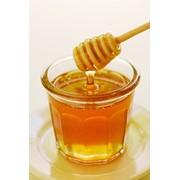 Мёд из степного разнотравья фото