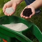 Внесение удобрений под газон фото