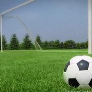 Уход и обслуживание футбольных полей фото